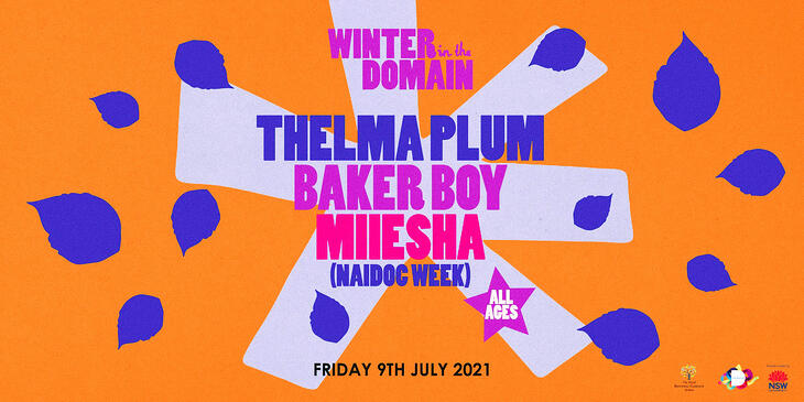 Winter in the Domain poster