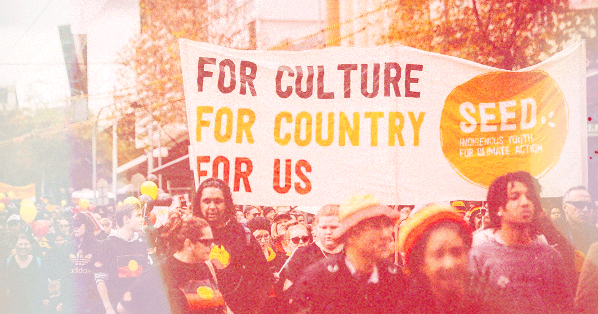 """Seed Mob Protest sign that says """"For Culture, For Country, For Us"""""""